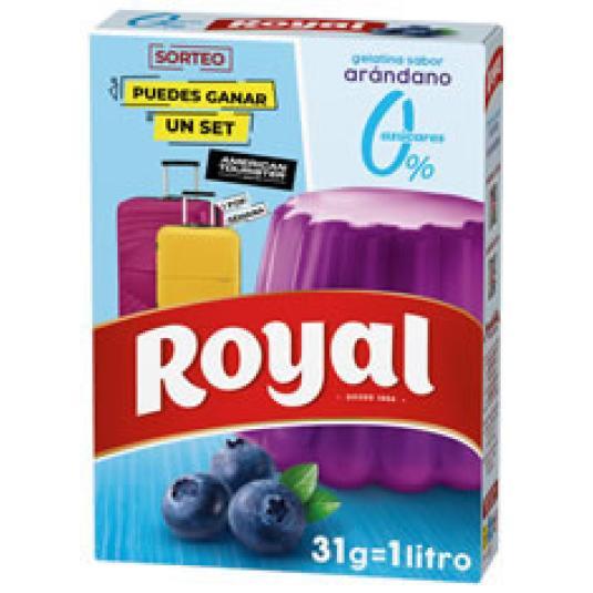 GELATINA ARANDANOS 0% AZUCAR 31GR